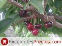 Tipos de cereza: Cristalina