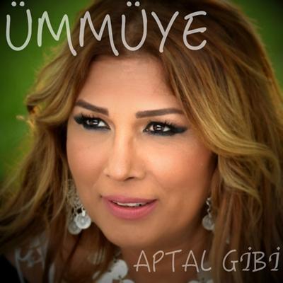 �mm�ye - Aptal Gibi (2014) Single Alb�m indir