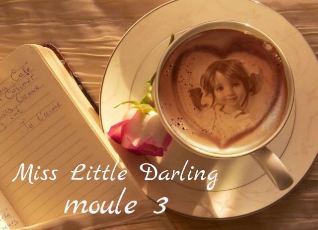 FINALE : miss little darling moule 3 - Page 2 49fa08fc-51e7-453...80845cbc-4c59d6e