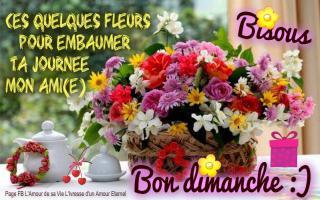 Bonjour / Bonsoir d'Octobre  - Page 2 Dimanche_067-510e8cb