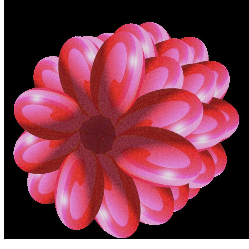 raspberry-002-513b8a7.png