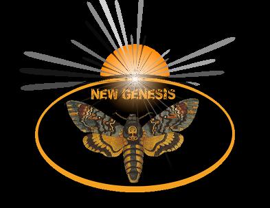 New Genesis, communauté de Fractal v7 Index du Forum
