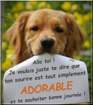 Bonjour / Bonsoir d' AOUT - Page 4 8a6974a9b48267533...ux-aussi-52e9990