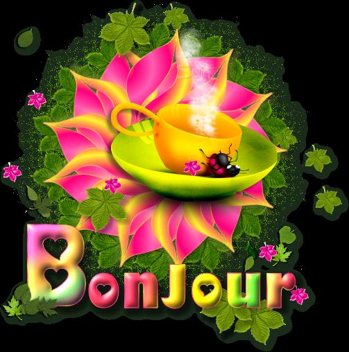 mardi 9/9/20/4 idem 20120830bjour-478a1d6