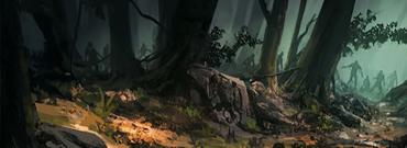 Forêt de Pepuere
