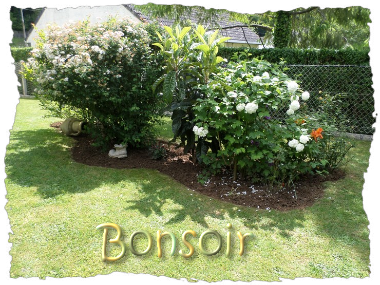 BONNE SOIRÉE DE MERCREDI Sam_1848-4b679da
