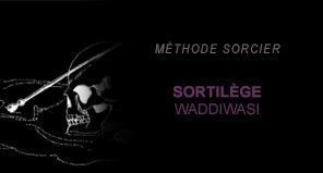 [Mardi 07 Octobre 1997] Etudes des Moldus - Comment neutraliser un Moldu en deux leçons Sorcier05-51b4562