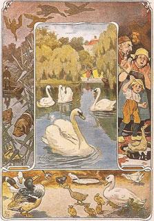 Une petite histoire par jour (La France Pittoresque) - Page 5 Andersen_canard-543a6a6