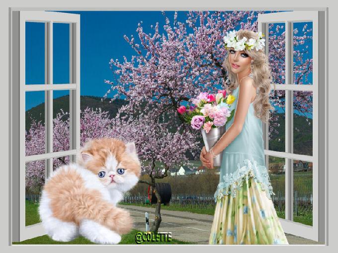 creations  de colette - Page 4 Concours-etoile-sign-e-5610a82