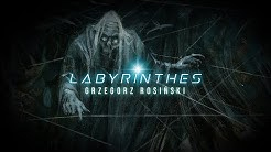 http://img110.xooimage.com/files/5/5/7/labyrinthes-1-grzegorz-rosin-55f1228.jpg