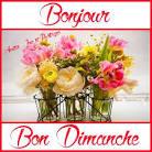 Bonjour / Bonsoir d' AOUT - Page 3 T-l-charg--52e44b2