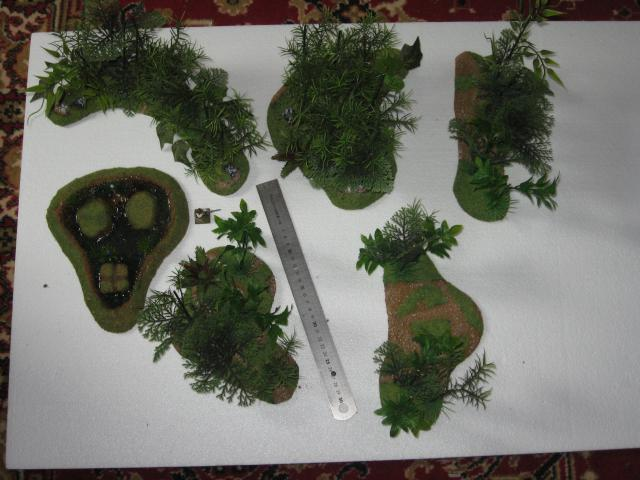 VENDU végétation luxuriante 2 Img_0355-50304c5