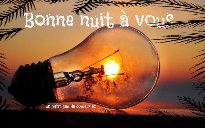 BON VENDREDI SOIR 07/11 Bonne-nuit_070-487850e