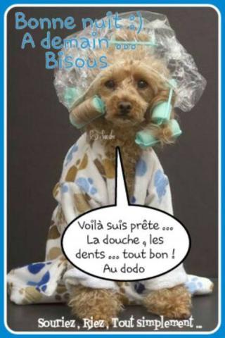 Bonjour / Bonsoir d'Octobre  - Page 2 Matin-5337319