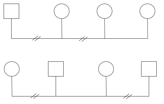 familiograma4