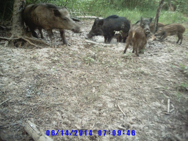 photos camera Sunp0003-495aeda