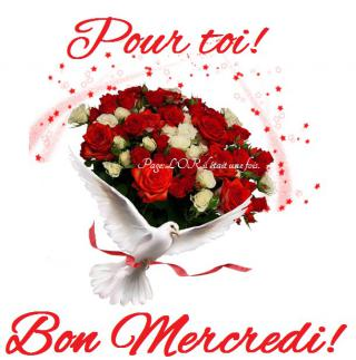 Bonjour /bonsoir de Septembre - Page 2 Mercredi_100-52fec13