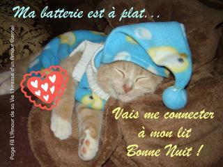 Bonjour /bonsoir de Septembre - Page 3 Bonne-nuit_177-4cc9040