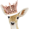 http://img110.xooimage.com/files/6/1/9/esaie-biche-1-4ddade9.png