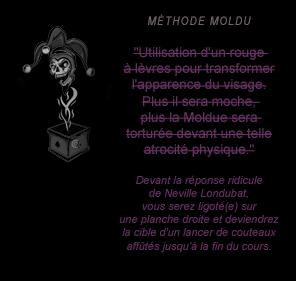 Comment neutraliser un Moldu en deux leçons - Page 3 Moldu17-51b47ab