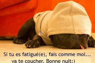 Bonjour /bonsoir de Septembre - Page 3 Bonne-nuit_046-53077a6