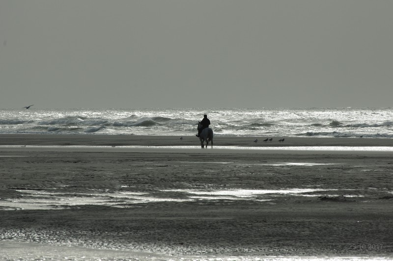 http://img110.xooimage.com/files/7/9/2/le-touquet-076a-5365dc7.jpg