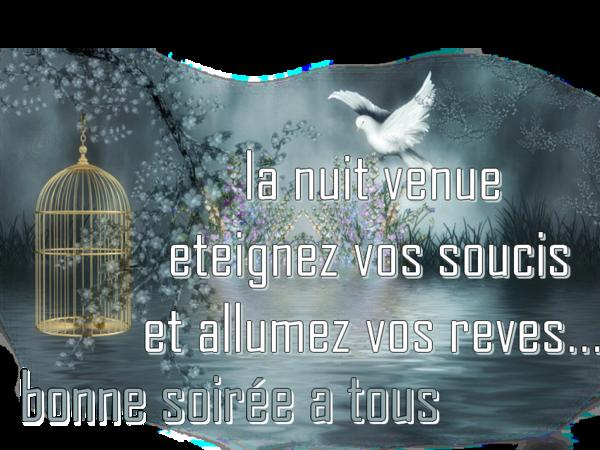 BONNE SOIRÉE DE DIMANCHE 5d091dad-4b1183d
