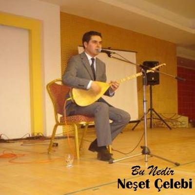 Ne�et �elebi - Bu Nedir (2014) Full Alb�m indir