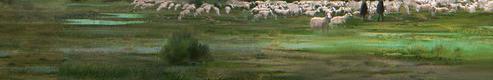 Plaines d'Avalon
