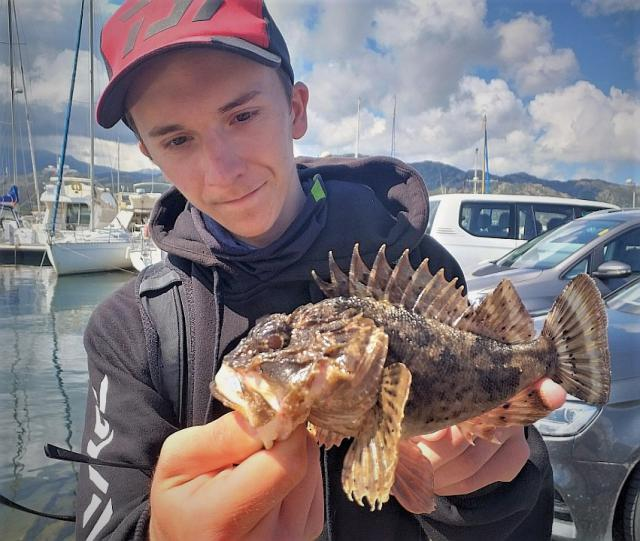 http://img110.xooimage.com/files/8/3/4/rascasse-rockfishing-5608dea.jpg