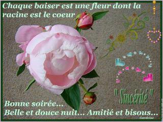 Bonjour / Bonsoir d' AOUT - Page 3 78959588_o-52e38ee