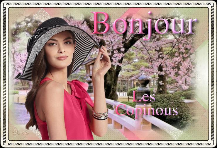 BONNE JOURNÉE DE MERCREDI Danielle-bonjour-4ad87a4