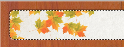 maple-leaf-selection-479a094.png