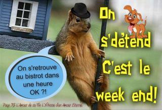 Bonjour /bonsoir de Septembre - Page 2 Bon-week-end_048-53033cd