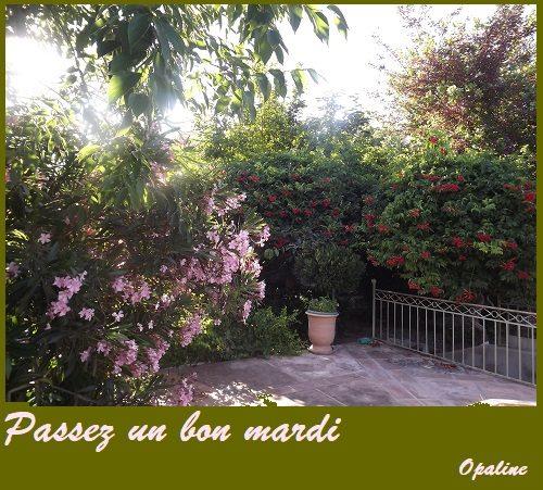 Bonjour du mois d'Avril 2019  - Page 3 26730780_19422012...417556_n-54bd9e6