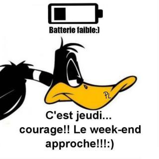 Bonjour / Bonsoir d' AOUT - Page 6 Jeudi_063-51c97f4