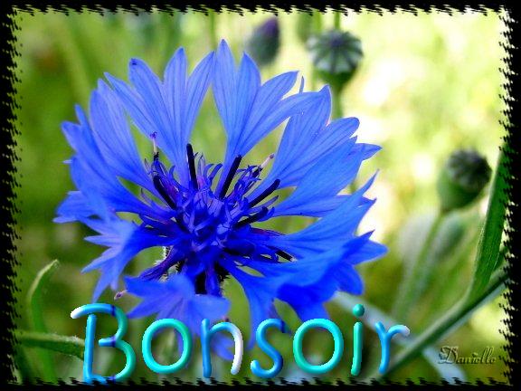 BONNE SOIRÉE DE VENDREDI Danielle-8-mai-4b23276