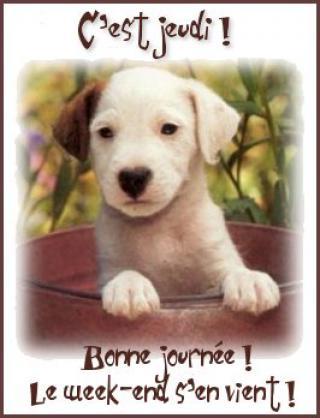 Bonjour / Bonsoir d' AOUT - Page 3 Bon_jeudi_joliecarte1-52dffc4