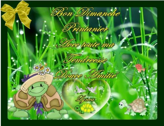Octobre le vaillant, surmène le paysan - Page 6 41---tortue---dimanche-480b326