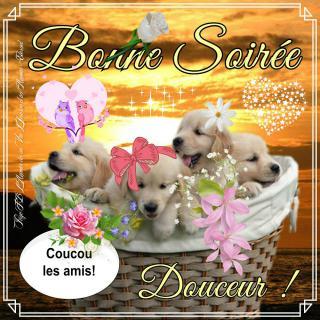 Bonjour / Bonsoir d' AOUT - Page 4 Bonne-soiree_098-4fd561d