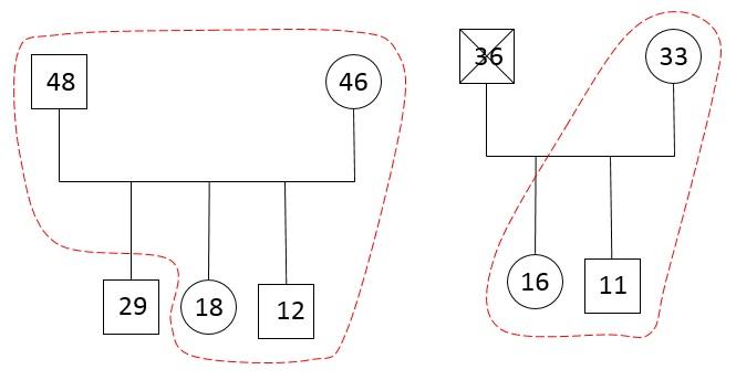 familiograma5