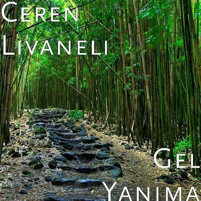 Ceren Livaneli - Gel Yan�ma (2014) Single Alb�m indir