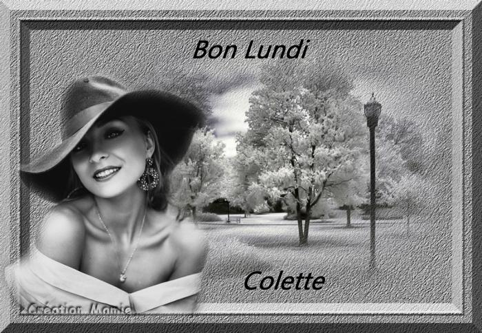 pause detente bonjour a bonsoir - Page 3 2-11-2017-51b3c91