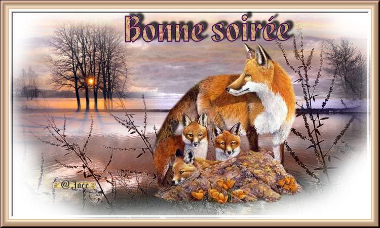 Bonne soirée du 08 septembre Bonnesoir-erenards-4744e47