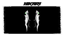 Sujet 00915176 Hikari1-5275fa8