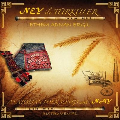Ethem Adnan Ergil - Ney �le T�rk�ler (2014) Full Alb�m indir