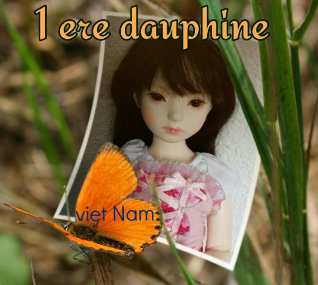 Election de la plus belle BJD Dollmore.. 14340248520451-4b98b6f