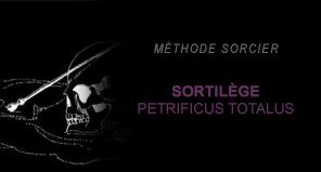 Comment neutraliser un Moldu en deux leçons - Page 2 Sorcier06-51b4568