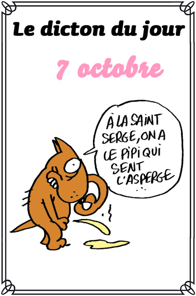 dicton du jour / dicton humour - Page 5 7ottobre4fd04e57-4d005f2