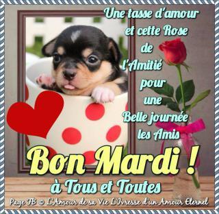 Bonjour / Bonsoir d' AOUT - Page 4 Mardi_136-52e77d6
